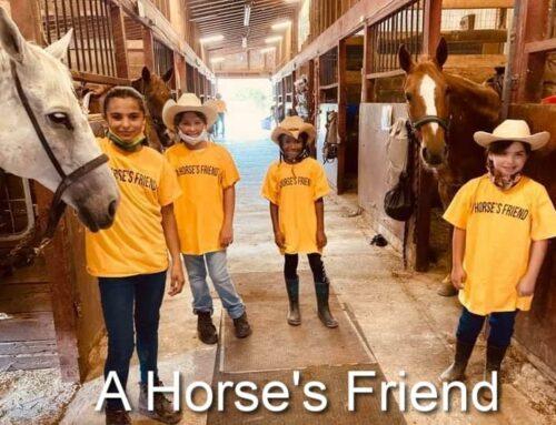A Horse's Friend