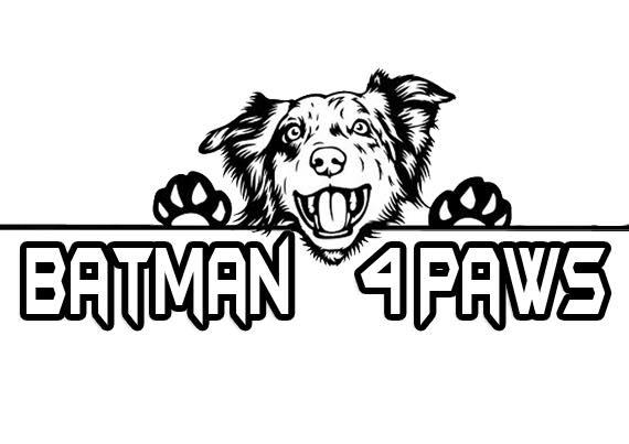 batman 4 paws